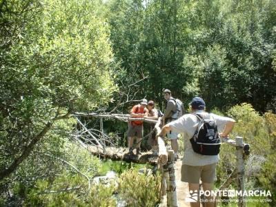 Senderismo Lago de Sanabria - Senderismo Zamora; agencias de senderismo